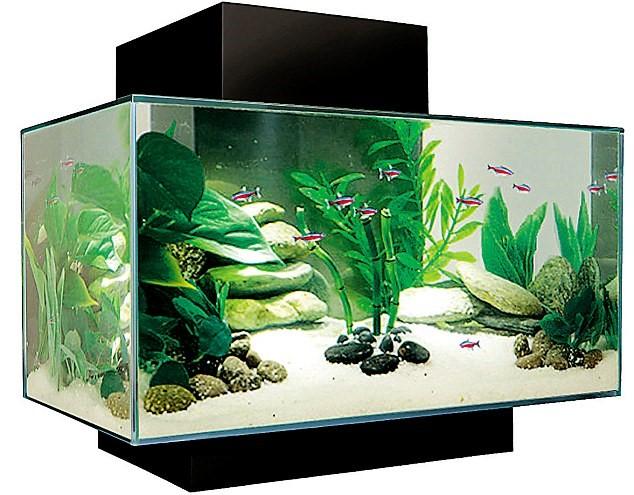 Dataintrång via ett akvarium
