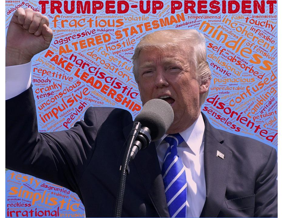 """""""Fake news"""" och Trumps valkampanj"""